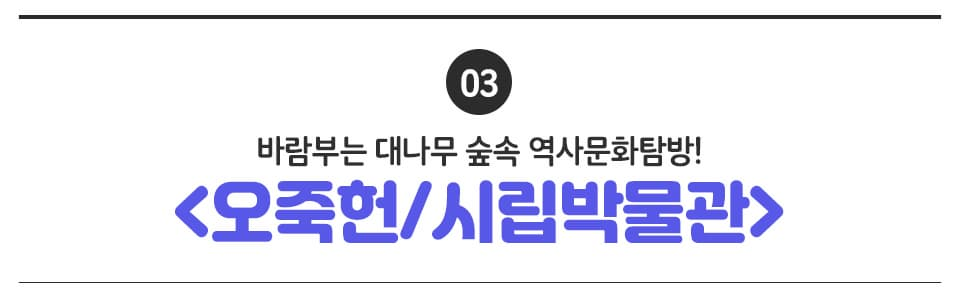 03 바람부는 대나무 숲속 역사문화탐방! <오죽헌, 시립박물관>