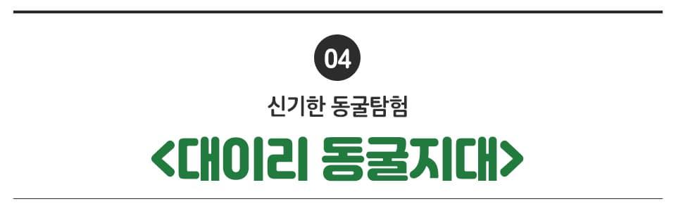 04 신기한 동굴탐험 <대이리 동굴지대>