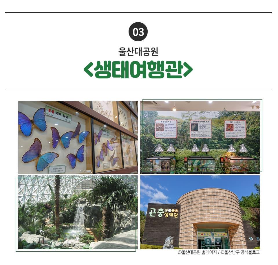 03 울산대공원 <생태여행관> 시계방향으로 생태여행관 내외부 이미지출처 울산대공원 홈페이지, 울산남구 공식블로그