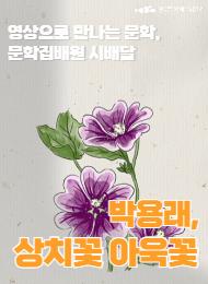 [문학] 상치꽃 아욱꽃