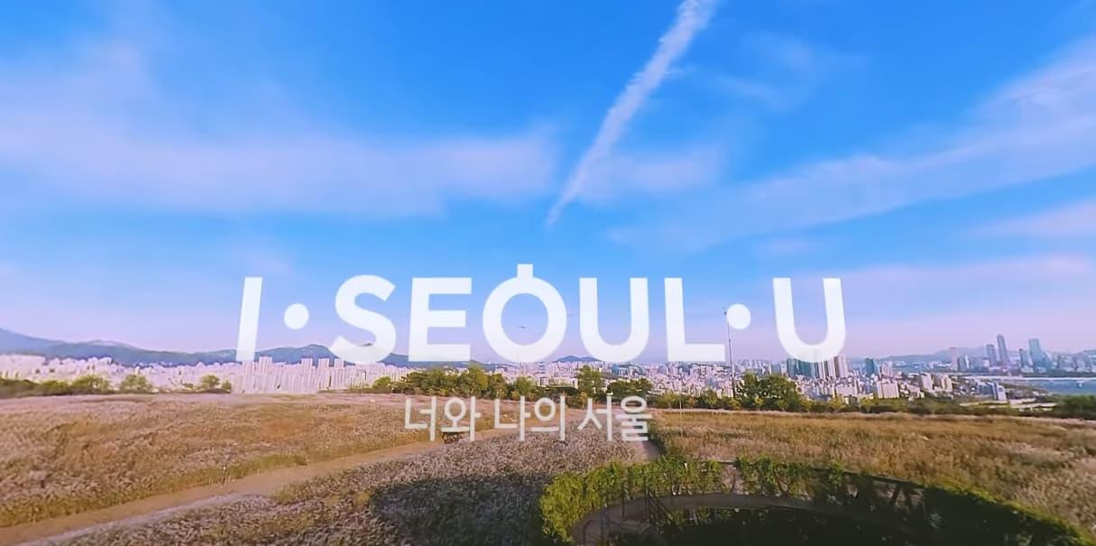 [서울집콕 360VR]하늘공원 억새밭