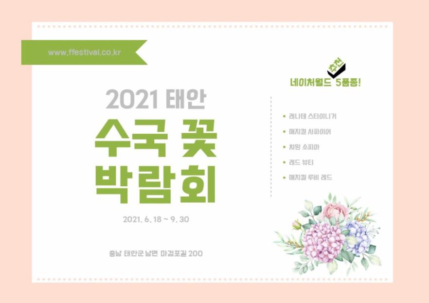 2021 태안 수국 꽃 박람회